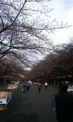 上野公園・中心_20090321.jpg